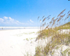 pet friendly vacation rental in saint augustine
